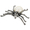 White Belly Spider Pin