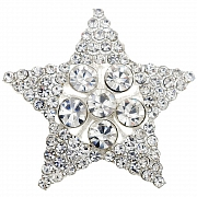 Crystal Star Wedding Pin