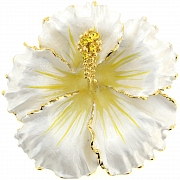 White Hawaiian Hibiscus Flower Brooch/Pendant (Chain Not Included)