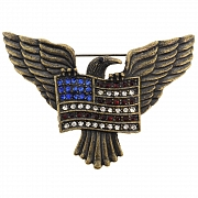 American Flag And Eagle Pin Bird Pin Brooch
